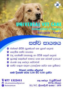 Pet stores & pet services in Kandy
