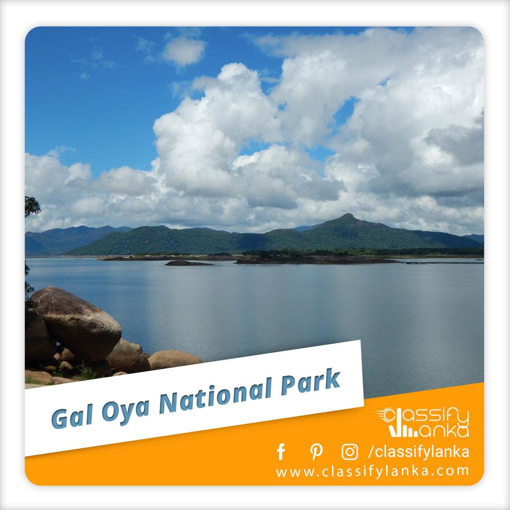 Sri Lanka Gal Oya National Park Safari guide