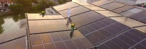 Regen Renewables services