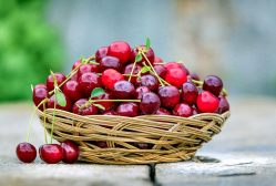 Les meilleurs aliments anti inflammatoires