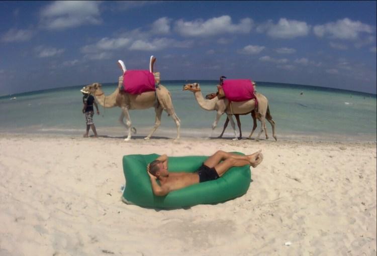 Lamzac devant les chameaux