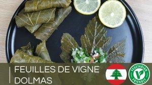 Recette feuilles de vigne, dolmas, dolmades | Mezzé libanais