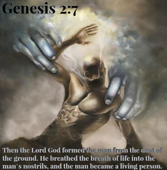 creation of man sovereignty of god christian studies classnotesng