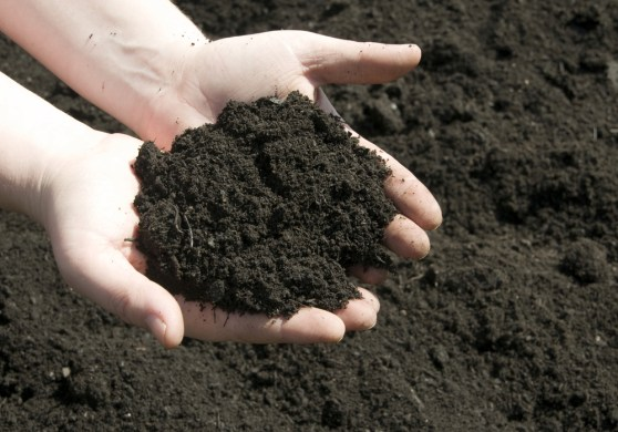 loamy soil types of soil agric science classnotesng