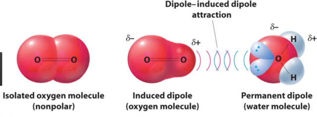 Dipole induced dipole interactions