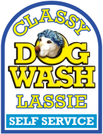 Classy Lassie Logo