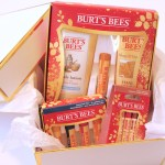 The Perfect Gift On a Budget With Burt's Bees