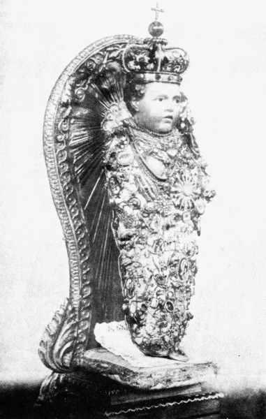 ara-coelis-the-bambino