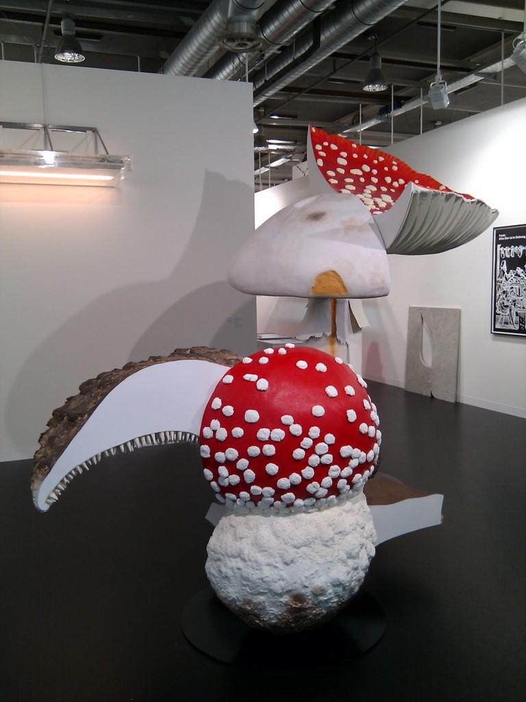 Riesen-Pilze