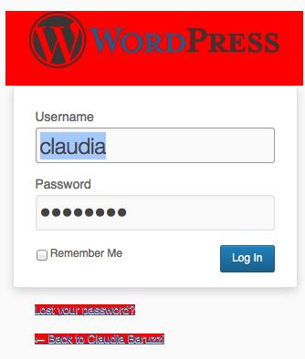 L'accesso al sito si presentava così...