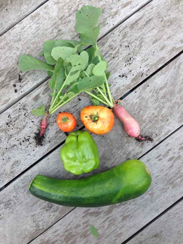 Sometimes I pick pictures because I think they are funny. Veggies used tio make a face.