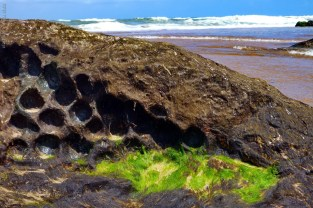 Pedras esculpidas