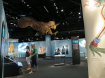 Denver-Museum-Nature-Science_13