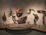 Denver-Museum-Nature-Science_20