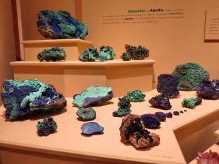 Denver-Museum-Nature-Science_24