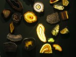 Denver-Museum-Nature-Science_28