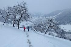 natureza-neve_11