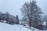 natureza-neve_12
