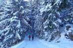 primeira-vez-na-neve_20