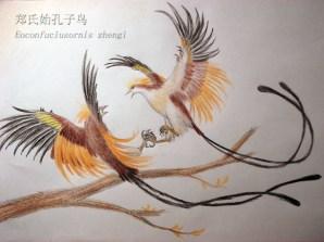 eoconfuciusornis_zhengi_by_jinfengopteryx