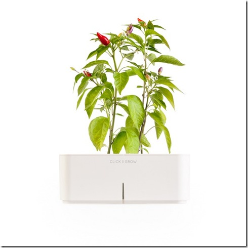 click-and-grow-flowerpot-6