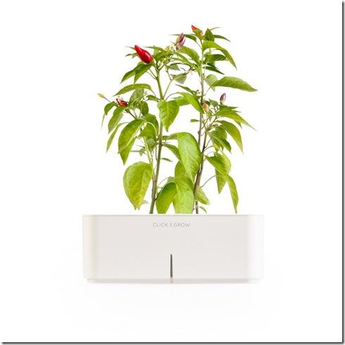 click-and-grow-flowerpot-6