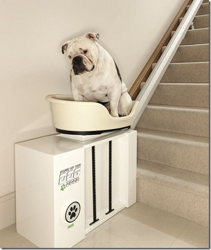 doggy-stairlift-2
