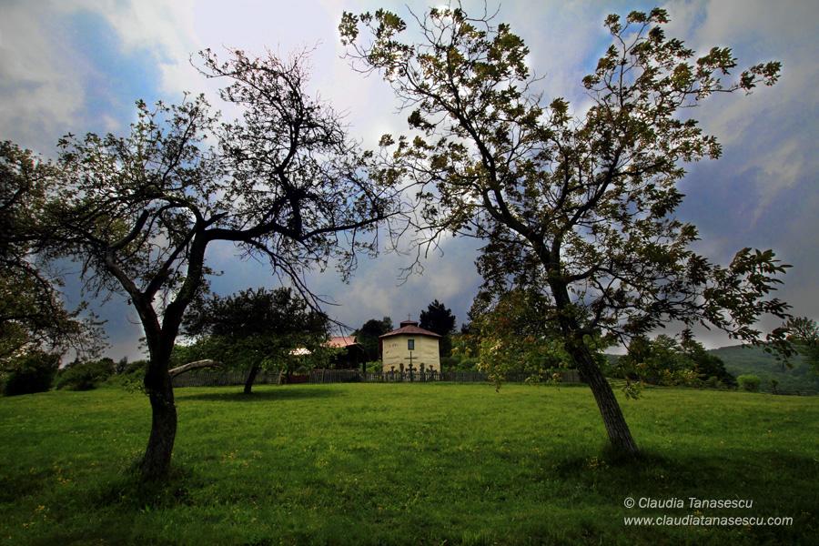 Herculane