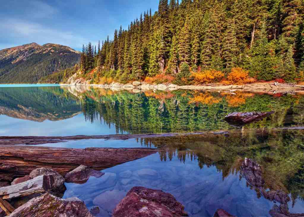 whistler with fall foliage