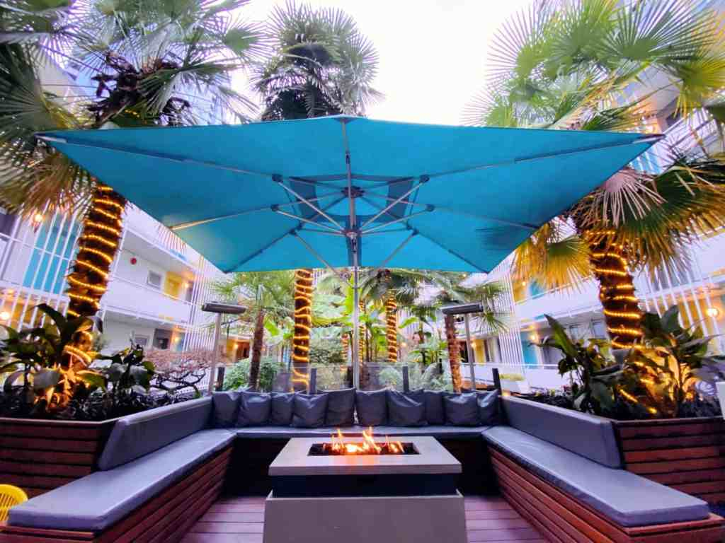 palm tree courtyard at the burrard hotel