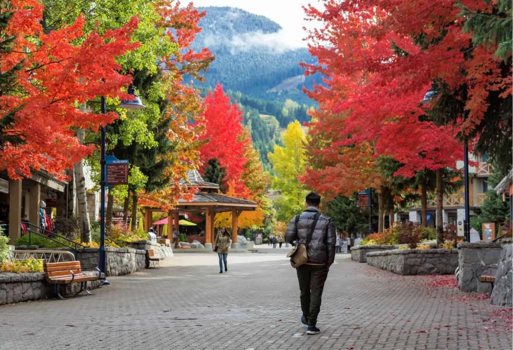 man walking through whistler in fall