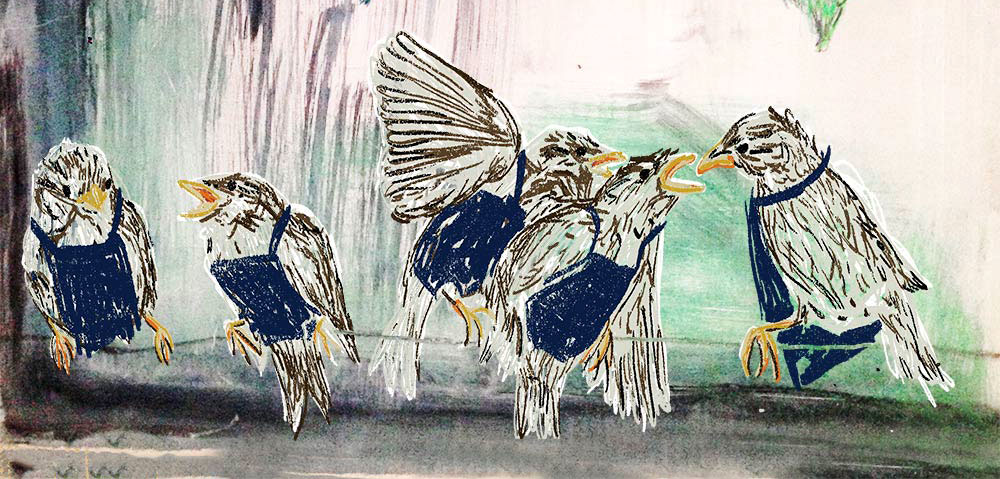Claudie Linke Illustration_Birds
