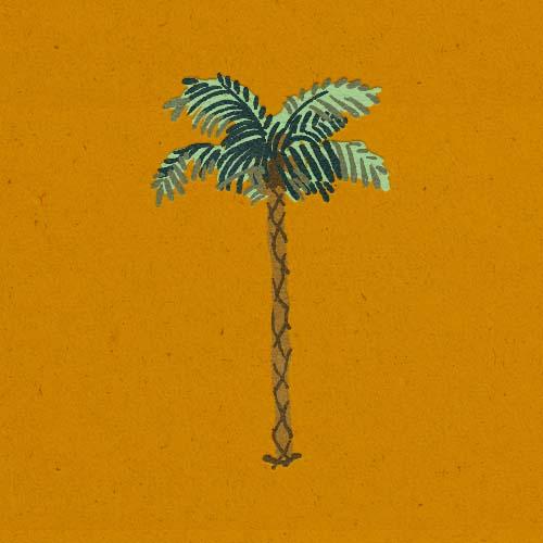 Claudie Linke Illustration_Palm Trees