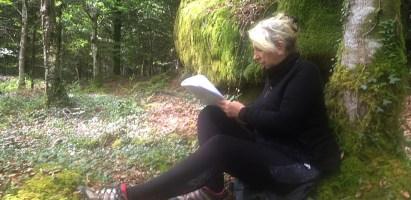 Bain de Forêt à Huelgoat – Activités Sophrologie et Sylvothérapie Dimanche 24 Octobre