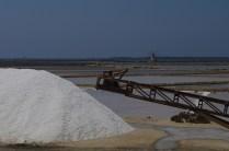 Unica concessione al processo di raccolta manuale: un nastro trasportatore per accumulare il sale nei grandi mucchi.