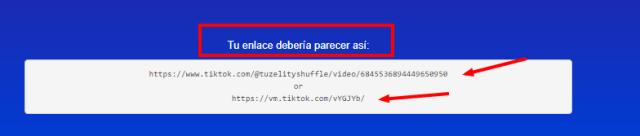 example link to download video in sssTIKTOK