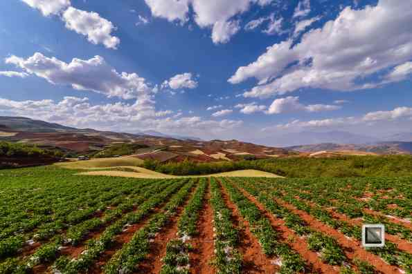 China - Yunnan - Dongchuan-17