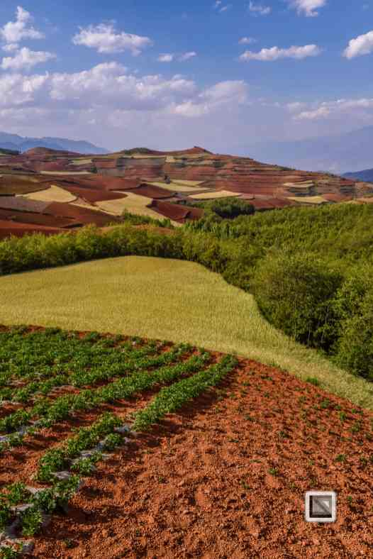 China - Yunnan - Dongchuan-18