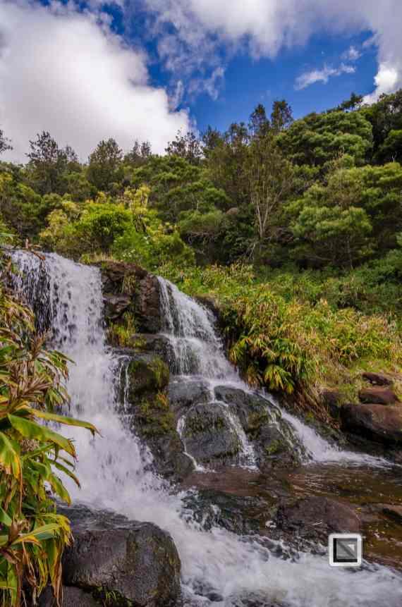 Hawaii Kauai-44