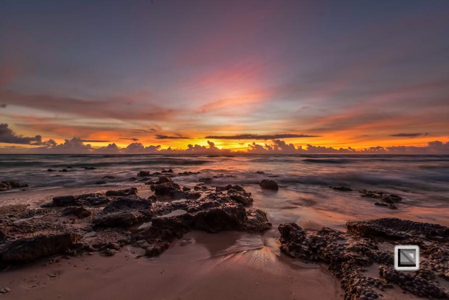 India - Andaman Islands - Neil-7