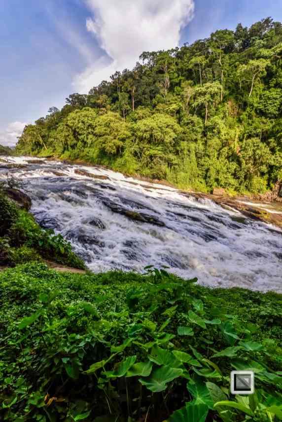 India - Kerala - Athirapally Falls-5