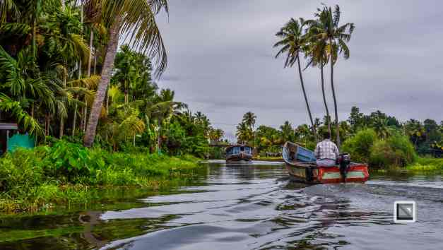 India - Kerala - Backwaters-2