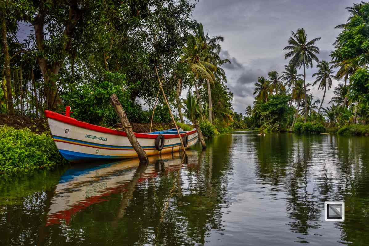 India - Kerala - Backwaters-3
