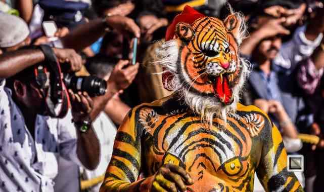 India - Kerala - Thrissur - Onam Festival - Pulikali-54