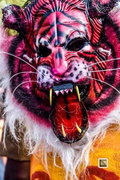 India - Kerala - Thrissur - Onam Festival - Pulikali-57