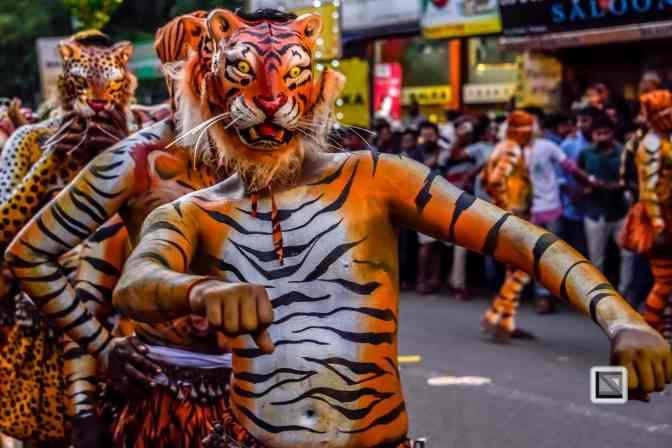 India - Kerala - Thrissur - Onam Festival - Pulikali-75