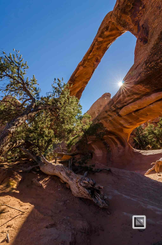 USA - Utah - Arches National Park-28