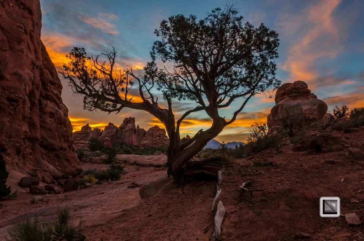 USA - Utah - Arches National Park-41