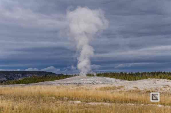 USA - Wyoming - Yellowstone National Park-30