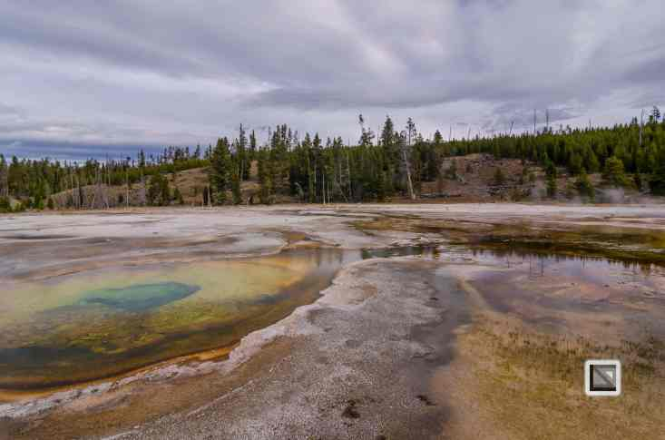 USA - Wyoming - Yellowstone National Park-50